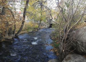 Photo of Bozeman Creek